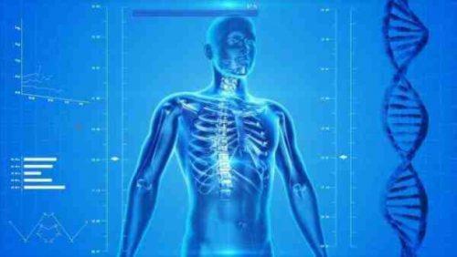 چگونگی کانابیس چگونه می تواند بیماران را از آسیب نخاعی بهبود بخشد