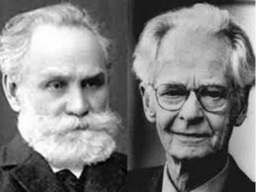پاورپوینت نظریه های یادگیری رفتاری پاولف ثرندایک و اسکینر