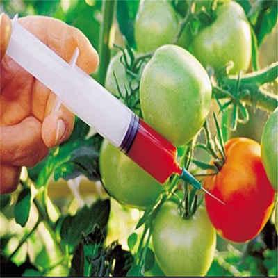 پاورپوینت محصولات دستکاری شده ژنتیک و سلامت GMOs
