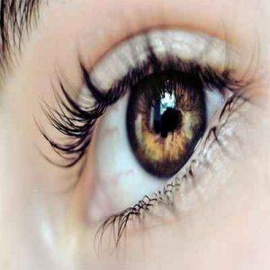 دانلود طرح جابربن حیان چشم انسان