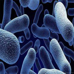 مقاله پیوند شیمیایی - تحقیق در مورد پیوندهای شیمیایی