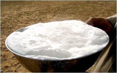 دانلود پاورپوینت تولید پنیر پیتزا