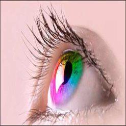 تحقیق درباره چشم - در مورد چشم - جزوه چشم - تحقیق در مورد چشم انسان